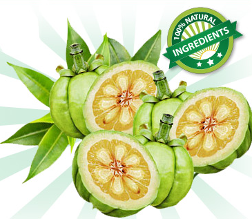 Garcinia Cambogia fruit with 100% natural ingredient icon